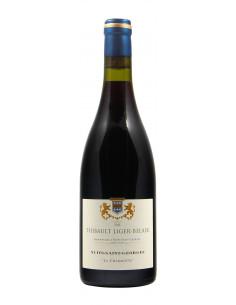 Vini di Borgogna vino naturale Nuits St Georges Les Charmottes (2013)