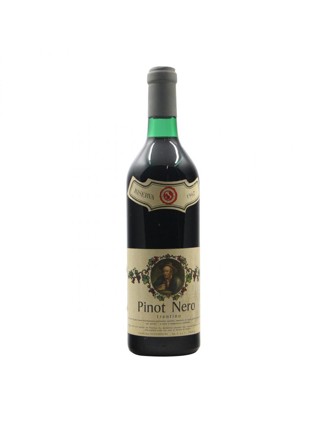 Pinot Nero Trentino Riserva 1967 CANTINA VITICOLTORI GRANDI