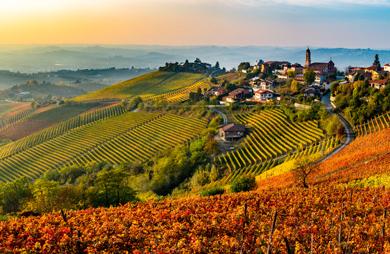 The best piedmontese wines on sell online on grandi bottiglie