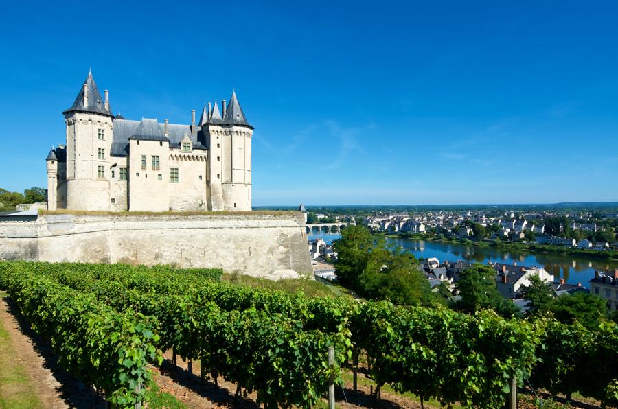 Vini della Loira in vendita online su Grandi Bottiglie